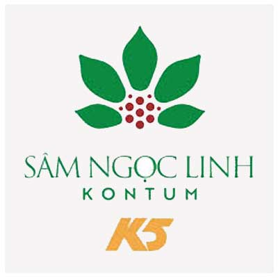 Sâm Ngọc Linh K5