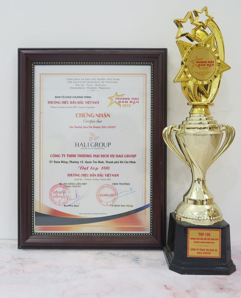 Giải thưởng mà Hali Group danh dự đạt được