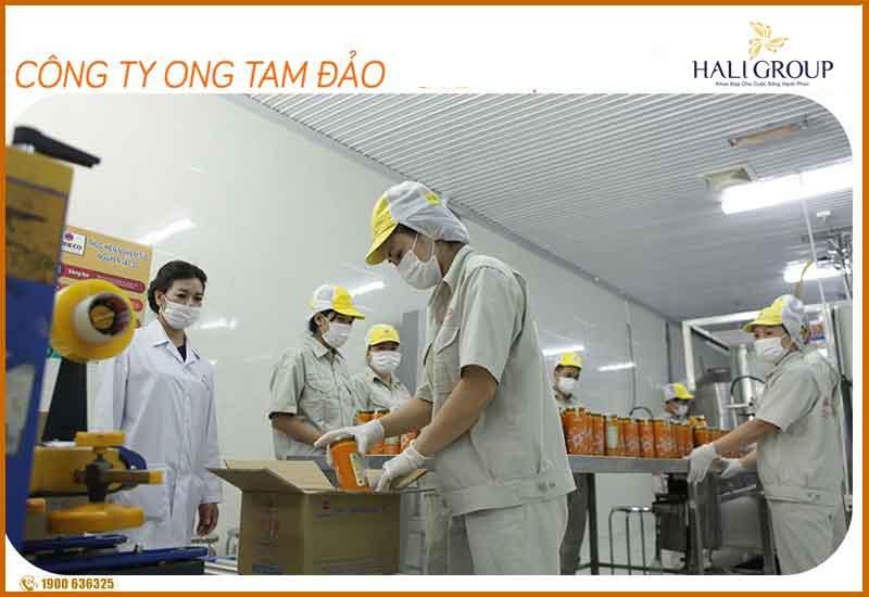 Công ty sản xuất mỹ nhân hoàng cung