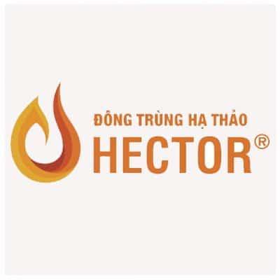 Đông trùng hạ thảo Hector